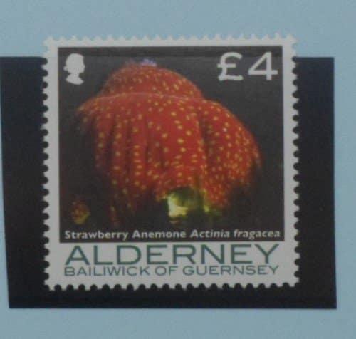Alderney Stamps, 2006-07, SGA308, Mint 3