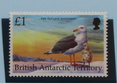 British Antarctic Territory Stamps, 1998, SG299, Mint 3