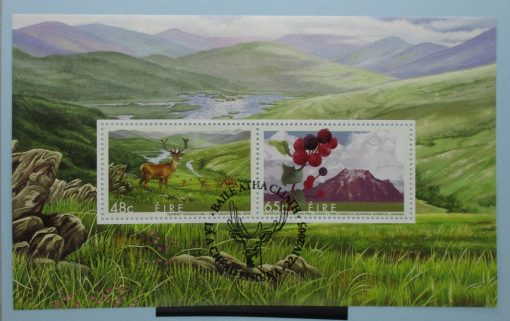 Ireland Stamps, 2005, MS1737, Used 3