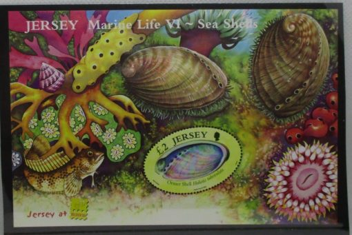Jersey Stamps, 2006, MS1293, Mint 3