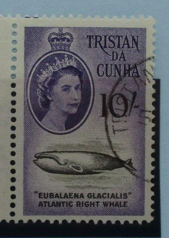 Tristan da Cunha Stamps, 1960, SG41, Used 3