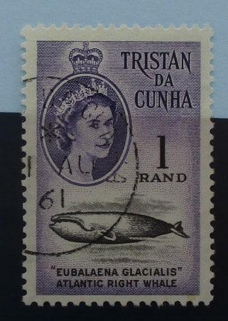 Tristan da Cunha Stamps, 1961, SG54, Used 3
