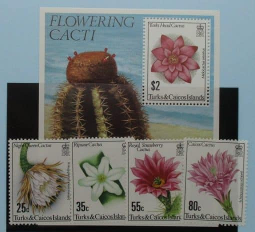 Turks and Caicos Islands Stamps, 1981, SG635-638, MS639, Mint 3